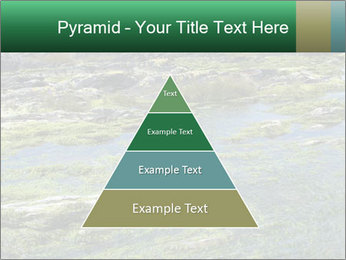 0000079428 PowerPoint Templates - Slide 30