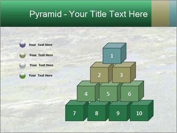 0000079428 PowerPoint Templates - Slide 31