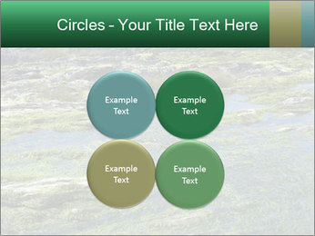 0000079428 PowerPoint Templates - Slide 38