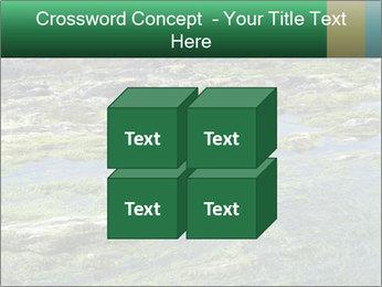 0000079428 PowerPoint Templates - Slide 39
