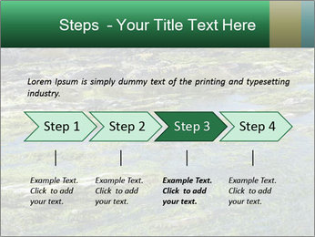 0000079428 PowerPoint Templates - Slide 4