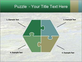 0000079428 PowerPoint Templates - Slide 40