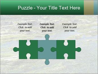 0000079428 PowerPoint Templates - Slide 42