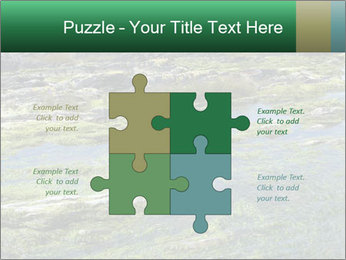 0000079428 PowerPoint Templates - Slide 43