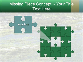 0000079428 PowerPoint Templates - Slide 45