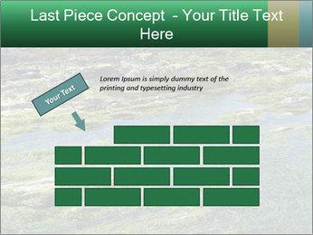 0000079428 PowerPoint Templates - Slide 46