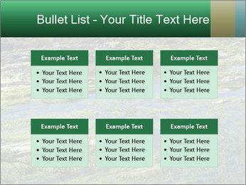 0000079428 PowerPoint Templates - Slide 56