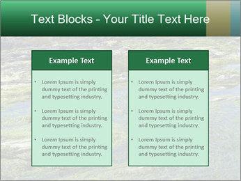 0000079428 PowerPoint Templates - Slide 57