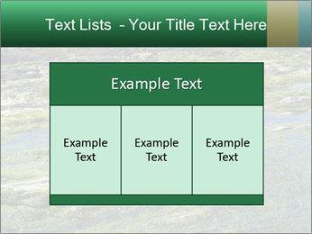 0000079428 PowerPoint Templates - Slide 59