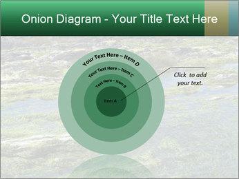 0000079428 PowerPoint Templates - Slide 61