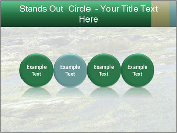 0000079428 PowerPoint Templates - Slide 76