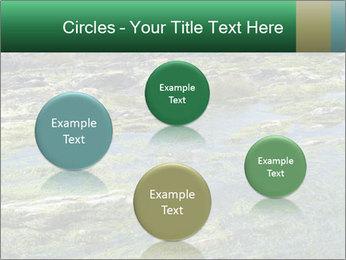 0000079428 PowerPoint Templates - Slide 77