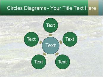 0000079428 PowerPoint Templates - Slide 78