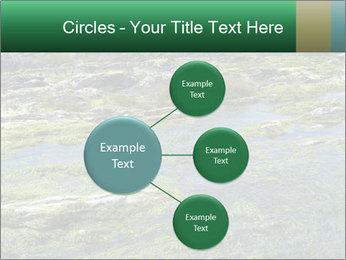 0000079428 PowerPoint Templates - Slide 79