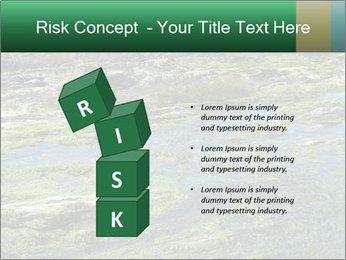 0000079428 PowerPoint Templates - Slide 81