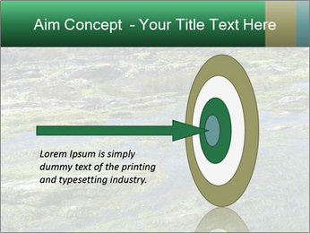 0000079428 PowerPoint Templates - Slide 83