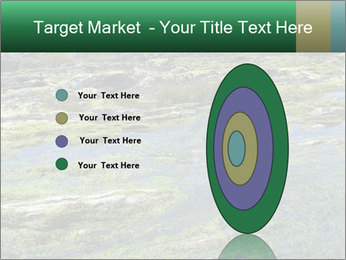 0000079428 PowerPoint Templates - Slide 84