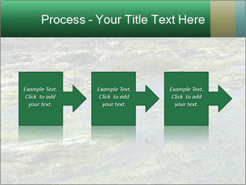 0000079428 PowerPoint Templates - Slide 88