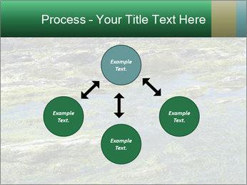 0000079428 PowerPoint Templates - Slide 91