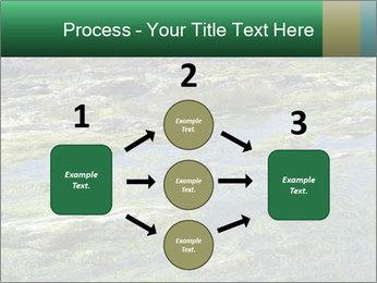 0000079428 PowerPoint Templates - Slide 92
