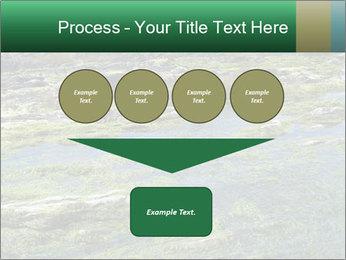 0000079428 PowerPoint Templates - Slide 93