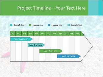 0000079434 PowerPoint Templates - Slide 25