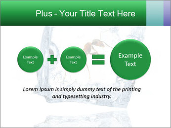 0000079436 PowerPoint Template - Slide 75