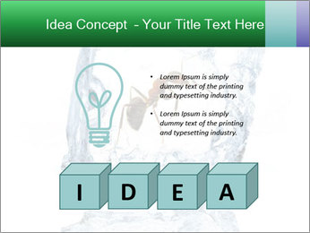 0000079436 PowerPoint Template - Slide 80