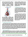 0000079436 Word Template - Page 4