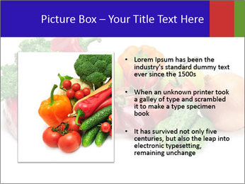 0000079438 PowerPoint Template - Slide 13