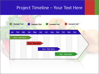 0000079438 PowerPoint Template - Slide 25