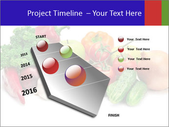 0000079438 PowerPoint Template - Slide 26