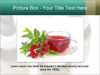 0000079442 PowerPoint Template - Slide 15