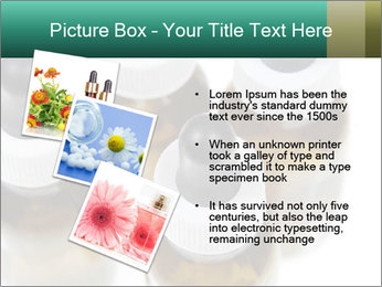 0000079442 PowerPoint Template - Slide 17