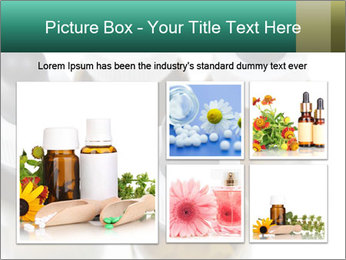 0000079442 PowerPoint Template - Slide 19