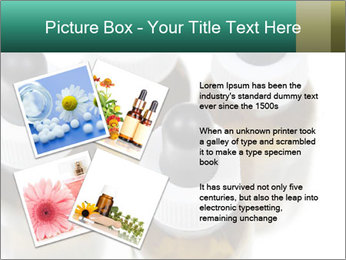 0000079442 PowerPoint Template - Slide 23