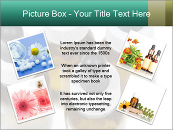 0000079442 PowerPoint Template - Slide 24