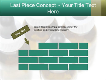 0000079442 PowerPoint Template - Slide 46