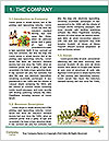 0000079442 Word Template - Page 3