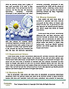 0000079442 Word Template - Page 4