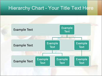 0000079448 PowerPoint Template - Slide 67