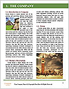 0000079451 Word Template - Page 3