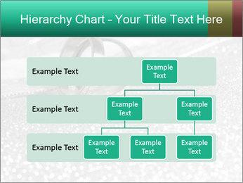 0000079461 PowerPoint Template - Slide 67