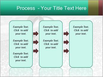 0000079461 PowerPoint Template - Slide 86