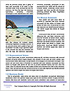 0000079464 Word Template - Page 4
