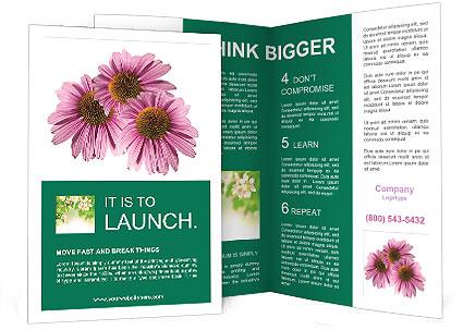 0000079466 Brochure Template