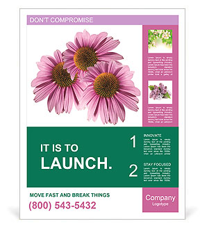0000079466 Poster Templates