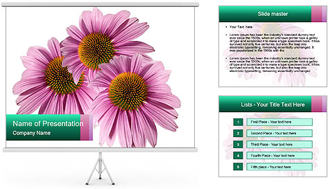 0000079466 PowerPoint Template