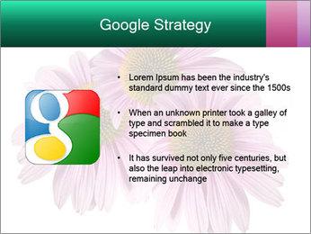 0000079466 PowerPoint Template - Slide 10