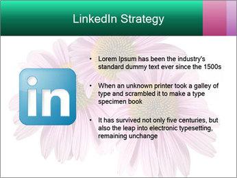 0000079466 PowerPoint Template - Slide 12